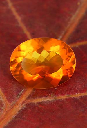 Opale di Fuoco Buriti