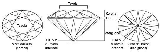Le diverse parti di una gemma